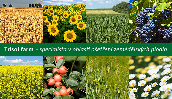 Trisol farm - specialist treatment of crops
